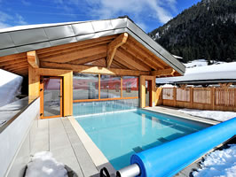 Swimming pool chalet